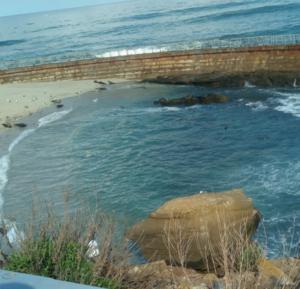 サンディエゴ観光 - La Jolla Cove (ラホヤコーブ)