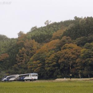奥出雲おろち号 2010