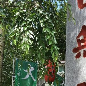 優しく歓迎してくださった田無神社の神様