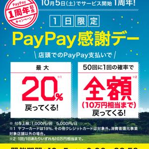【PayPay感謝デー】20%還元キャンペーン開催!還元条件等、キャンペーン概要情報まとめ