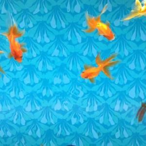 【すみだ水族館】スタイリッシュ水族館!【スカイツリータウン/ソラマチ】