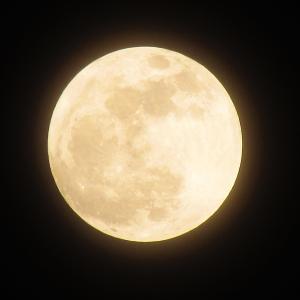 【2019・お月見】月はいずこ・・・