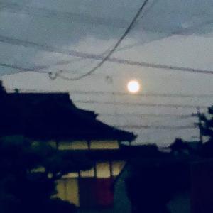 仲秋の名月…今年は