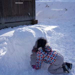 雪だるまの次はカマクラを作るというので・・・。