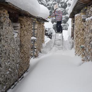 昨日は結構降ったので除雪朝晩2回今朝も続きをやって帰ってきてからもまた続きw写真は去年のヤツだけど昨日はこんな感じに・・・倶知安よ...
