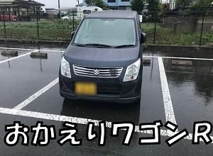 相棒が帰ってきました。あいにくの雨で無念の車内飯。