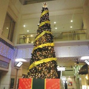 クリスマスツリーを沢山見ます