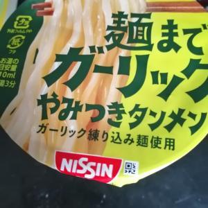 カップラーメン、冷凍麺(16回目)