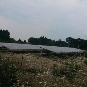 太陽光発電所のメンテ契約は、太陽光発電所だけを除草する。それは当たり前のことですが…