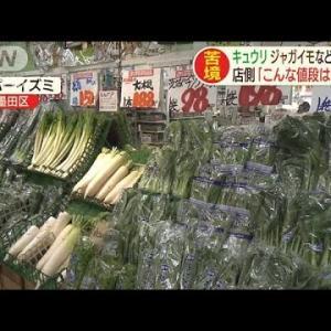 【農産】野菜高騰、価格2倍も 大雨や日照不足で 食卓に影響