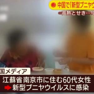 【新型ブニヤ】中国で「新型ブニヤウイルス」7人死亡…60人が感染