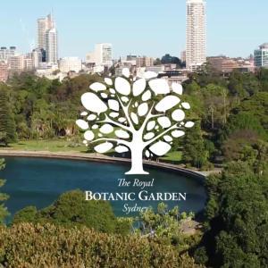 シドニー生活の癒し。「ロイヤルボタニックガーデン」で芝生を味わおう。