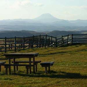 秋の多和平展望台の風景。360度見渡す限りの牧場風景