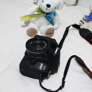 EF40mm F2.8 STM 実写プチレビュー。念願のパンケーキレンズをついに入手
