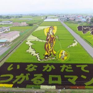 旭川の「田んぼアート」に頑張ろう北海道! 田んぼアートの歴史と全国の事例