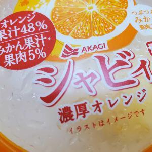 夏の名残の氷菓が吉野家の牛丼の具と共に冷蔵庫にある