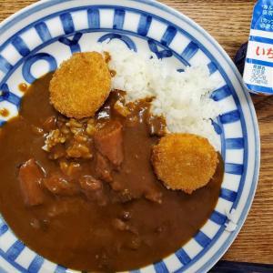 JT優待の北海道ビーフカレーを食べる