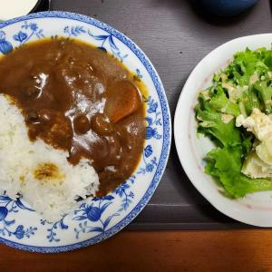 JTの優待カレーを食べる