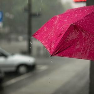 『雨の日には雨の中を 風の日には風の中を』