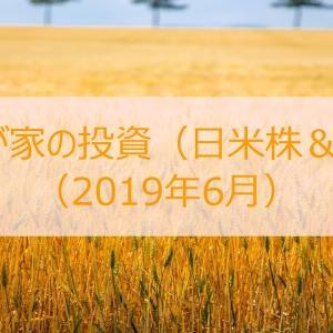 【公開】我が家の投資(日米株式&FX投資)実績(2019年6月)