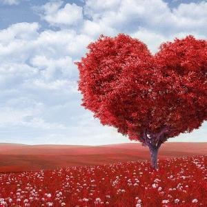 バレンタインデーには愛情と一緒に癒しと希望を贈ろう♡