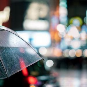 傘の日に入梅。インド秘伝ハーブ「ミラクルアムリット」を傘にして