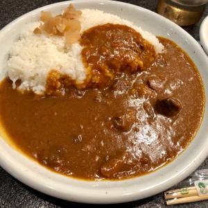 京都駅構内で早い、安い、美味しいカレー(スパイシーマサラ)
