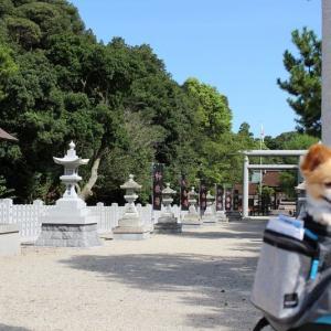 毛根のパワースポット!? 神社巡り&ちりめんじゃこソフトクリームが美味しかった話 in 淡路島