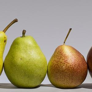 フランス語、予習・復習ノート 13 果物が入ったフレーズ