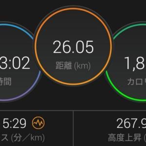 30km走の結果