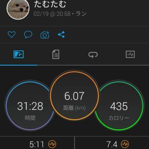 丹波篠山マラソン中止!?