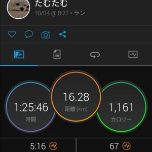 9月の走行距離!