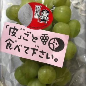 🍇桃太郎ぶどう