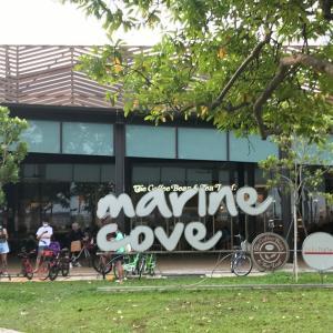 マリンコーブ【marine cove】のプレグラは遊べるのか⁉︎