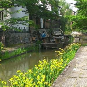 2020年4月12日バスツアー・近江商人の町近江八幡と八幡堀を散策