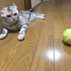 こふくのクセ☆〜その2〜