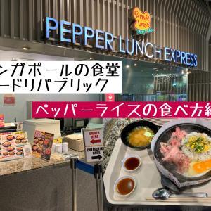 フードリパブリックのペッパーランチはFROM  JAPAN