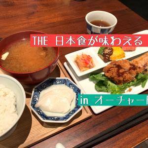 オーチャードで日本食ランチ