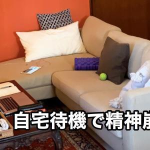 自宅待機が続くシンガポール生活の悩み