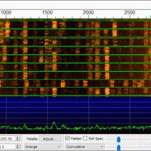 [DIGI] SSNが0でもグッドコンディション
