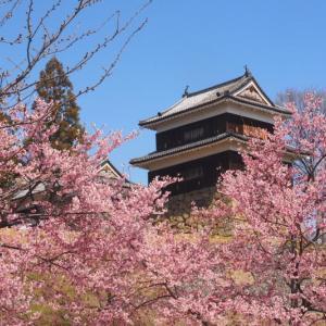 今日の浅間山 2020年3月27日(金)上田城跡公園