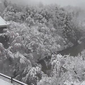 今日の浅間山 2020年3月29日(日) 大雪