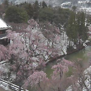 今日の浅間山 2020年3月30日(月) 雪解け