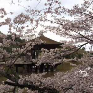 長野→大阪→奈良 2020年4月2日(木)