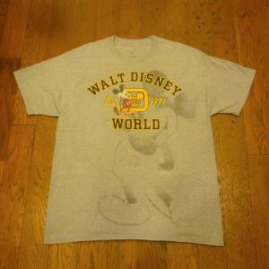 WALT DISNEY WORLD by Hanes Tシャツ、他2点UPしました !