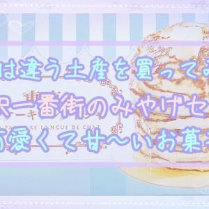 【東京駅一番街】口コミでも人気!お土産お菓子『パンケーキラングドシャ』