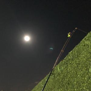 3連休・・・1戦目…夜カレイ狙い☆彡横浜