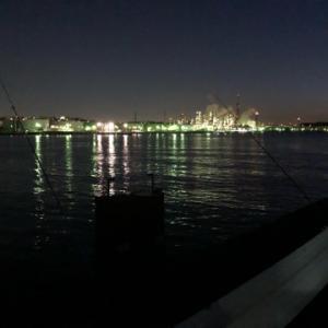 厳しいの承知で………早朝のカレイ&シロギス狙い☆彡根岸湾