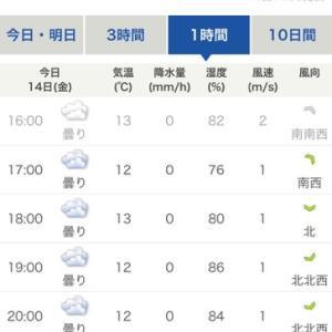 雨のご褒美^ ^………ブッコミ夜釣りカレイattack☆彡横浜