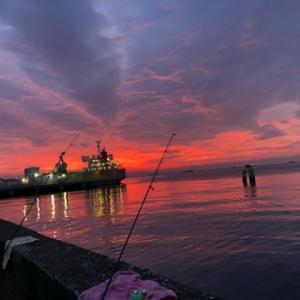 綺麗な朝焼けを眺めならカレイ狙い☆彡磯子岸壁